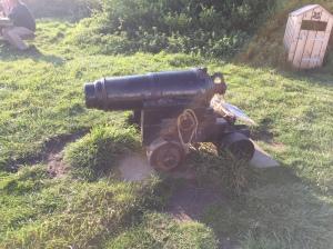 Fog cannon
