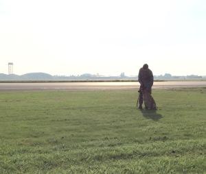 Military working dog demonstration